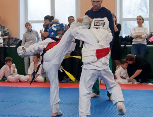 Открытое первенство по каратэ Сейвакай среди детей, юниоров и юношей
